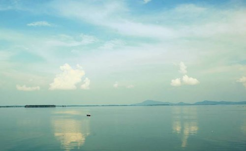 Tay Ninh moves wild monkeys to National Park hinh anh 1