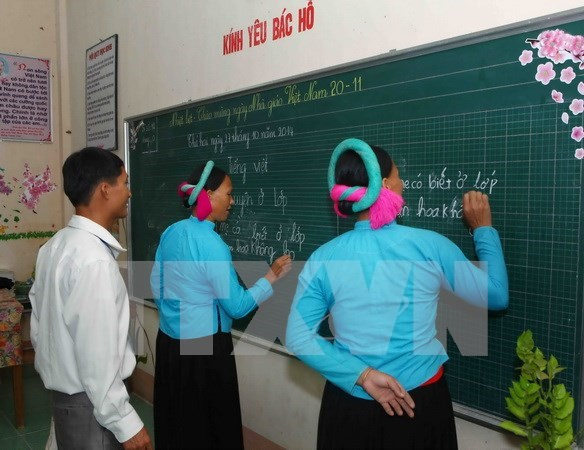 Campaign brings literacy to 800,000 people in Dong Thap hinh anh 1