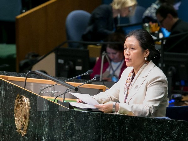 Vietnam calls for building world order in line with int'l law hinh anh 1