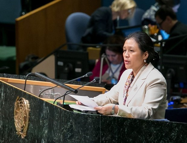 Vietnam calls for continued resources to development hinh anh 1