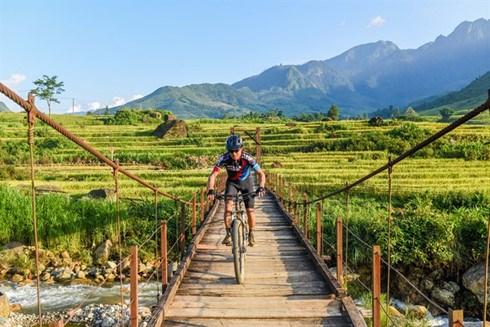 Vietnam Mountain Bike Marathon scheduled for November hinh anh 1