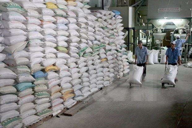 Philippines to import more rice from Vietnam hinh anh 1