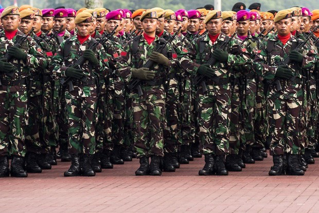 Indonesia's 2017 defence budget to be lower than proposed hinh anh 1