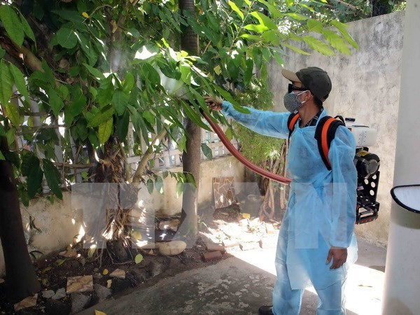 Two more Zika virus cases reported in HCM City hinh anh 1
