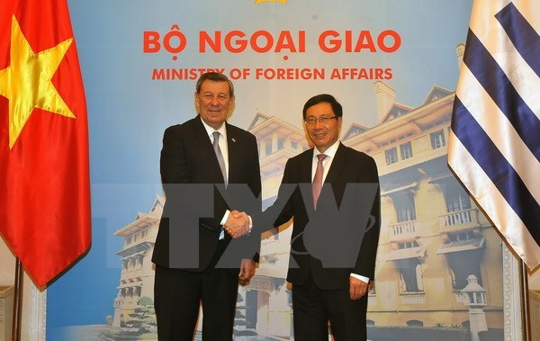Vietnam, Uruguay to set up joint committee on trade cooperation hinh anh 1