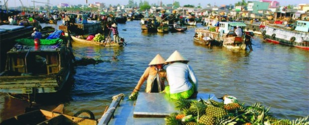 River tours fall without Mekong Delta flood rains hinh anh 1