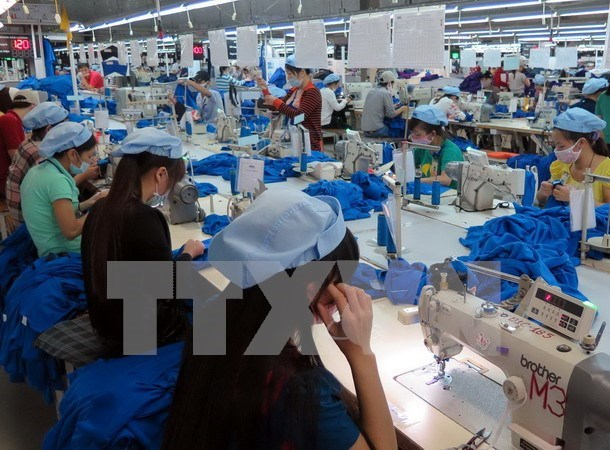 About 5,000 tariff lines go down to zero under Vietnam-EAEU FTA hinh anh 1