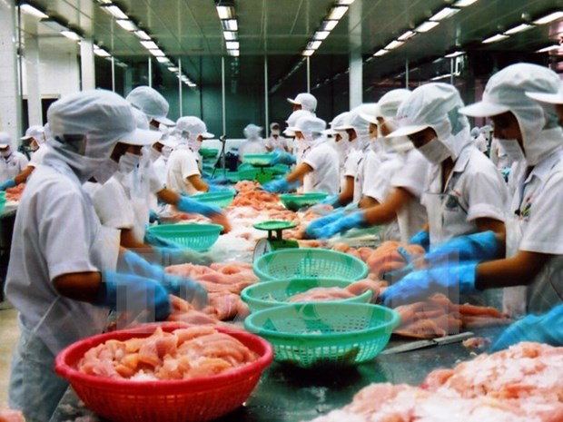 Vietnam to become global seafood processing centre hinh anh 1