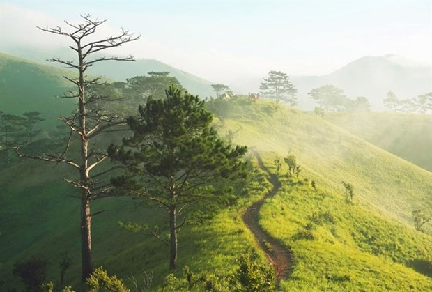 The thrilling three-province Ta Nang–Phan Dung trek hinh anh 1