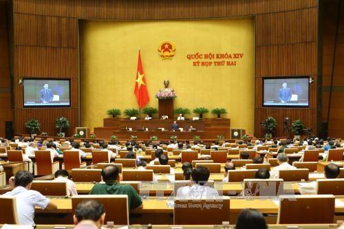 Revisions to Penal Code under debate at NA's plenary meeting hinh anh 1