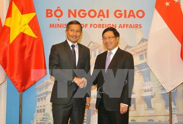 Vietnam, Singapore to seek new direction for beefing up cooperation hinh anh 1