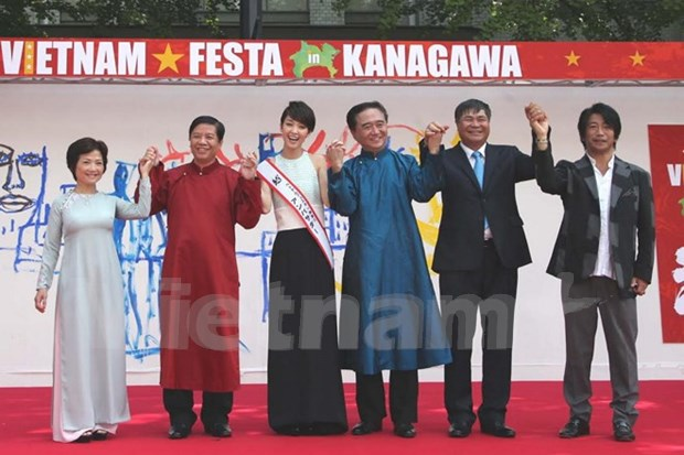 Festival brings Vietnam closer to Japan hinh anh 1