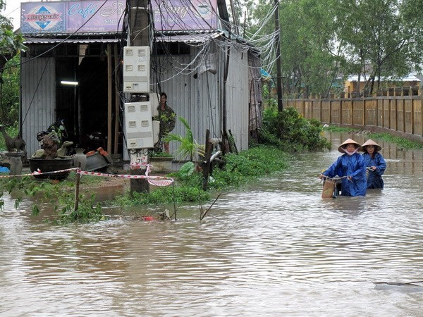 Floods woes continue for central region hinh anh 1