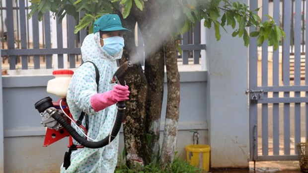 Central localities work to tackle dengue fever hinh anh 1