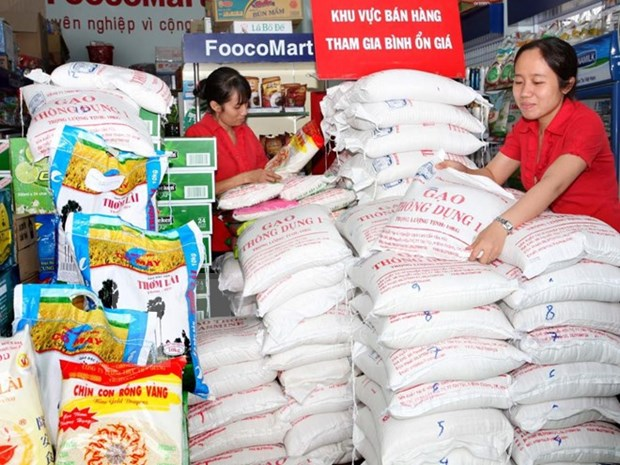 Vietnam, IRRI join hands in developing rice production hinh anh 1