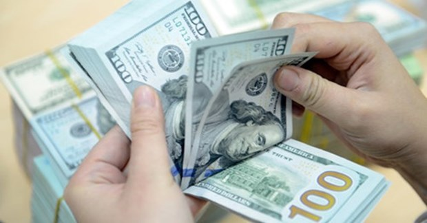 Reference exchange rate dips further hinh anh 1