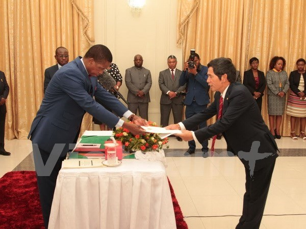 Zambia wishes to expand cooperation with Vietnam hinh anh 1