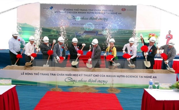 Nghe An to have new high-tech pig farm hinh anh 1