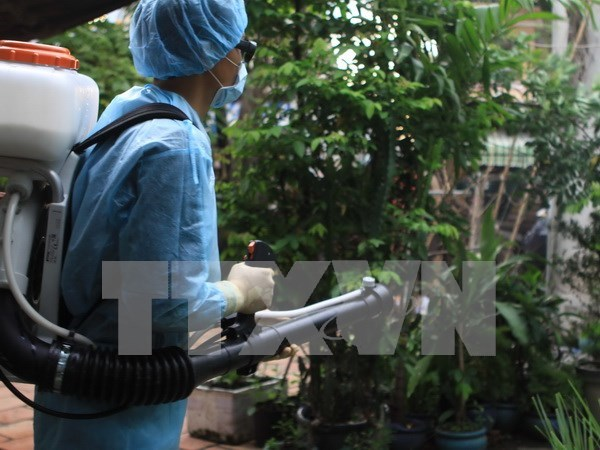 HCM City asked to contain Zika spread hinh anh 1