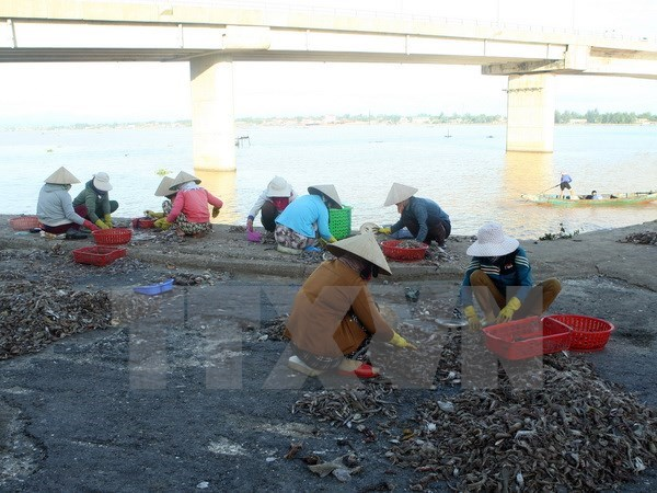 Additional measures sought for pollution-affected central locals hinh anh 1