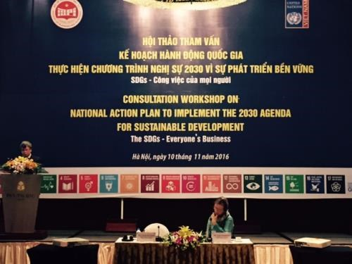 Joint efforts needed for UN Agenda implementation hinh anh 1