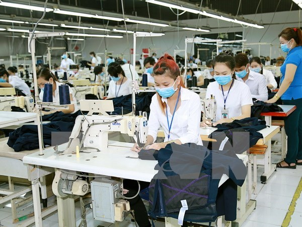Local textile, garment businesses face difficulties in 2017 hinh anh 1