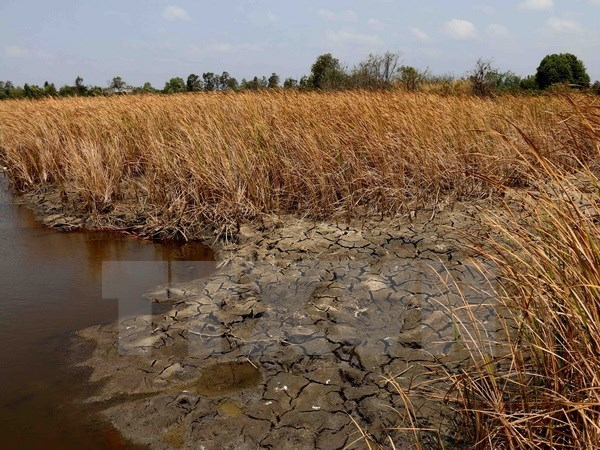 Experts seek solutions to water resources exhaustion hinh anh 1