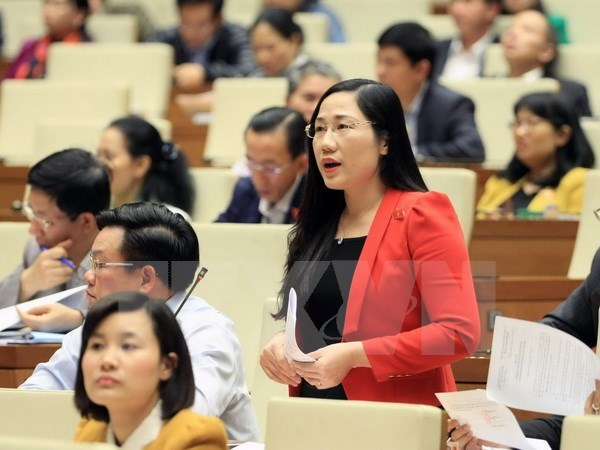 Resolution on State budget estimate adopted hinh anh 1