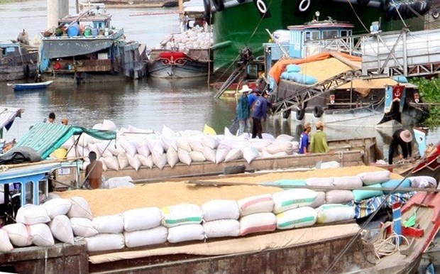 Vietnam needs to create a rice brand: experts hinh anh 1