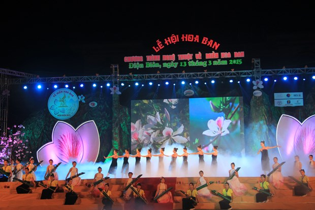 Ban Flower Festival 2017 opens in March next year hinh anh 1