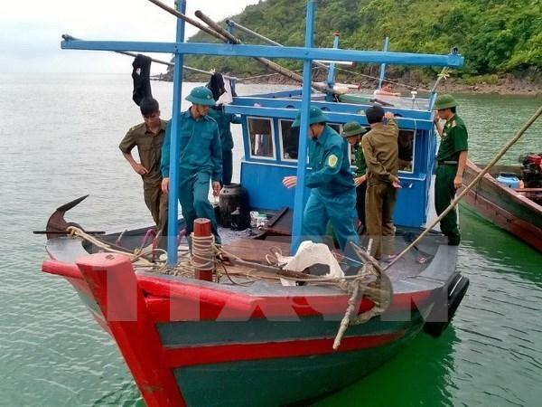 Quang Ngai promotes off-shore fishing hinh anh 1