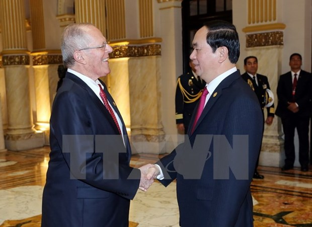 Vietnamese, Peruvian Presidents discuss boosting ties hinh anh 1