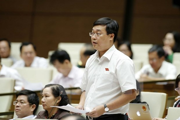 Group of young National Assembly deputies debuts hinh anh 1