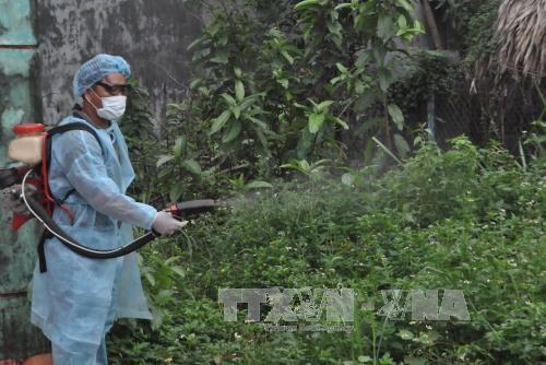 Binh Phuoc works to tackle dengue, Zika virus hinh anh 1