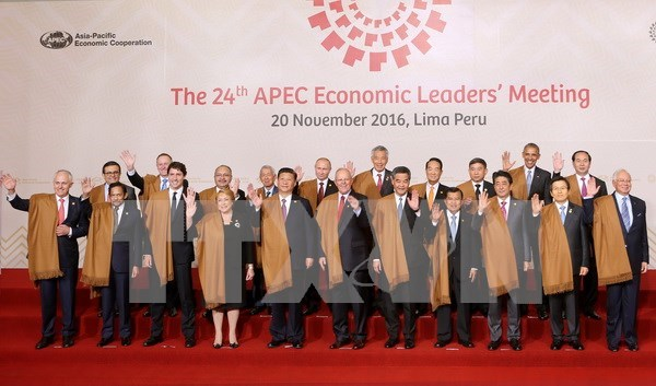 Hosting APEC Year 2017 – centre of Vietnam's external activities hinh anh 1