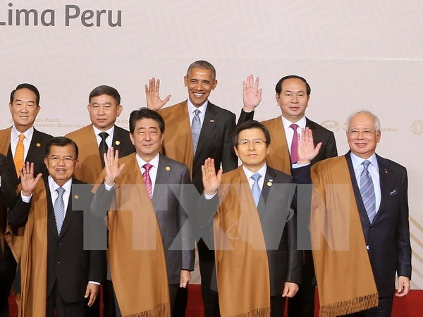 President addresses first plenum of APEC Economic leaders' meeting hinh anh 1