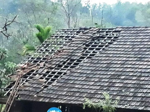Hailstorms destroy hundreds of houses in Nghe An hinh anh 1