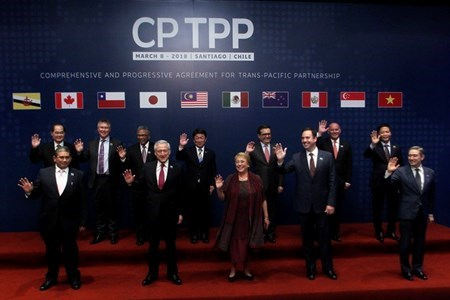 CP TPP expected to boost Vietnam-Chile economic ties hinh anh 1