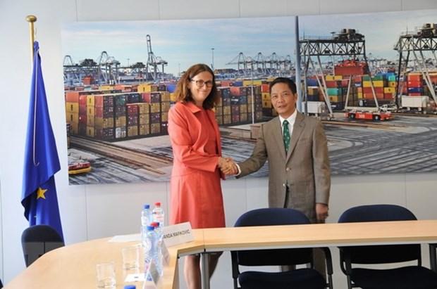 Legal review for Vietnam-EU FTA concludes hinh anh 1