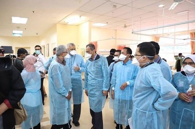 Malaysia investigates strange deadly disease hinh anh 1