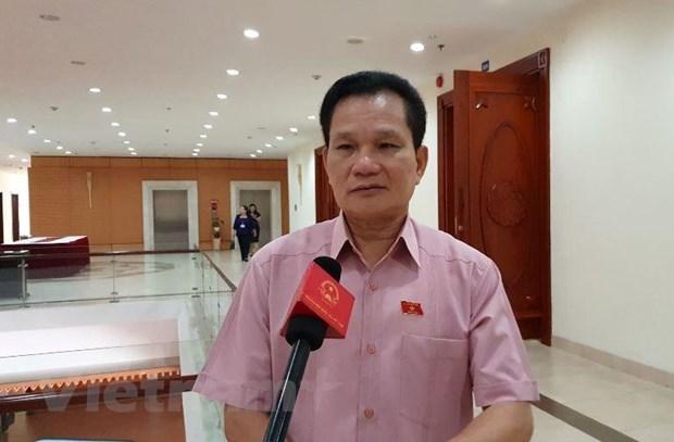 Vietnam's older population face challenges hinh anh 2