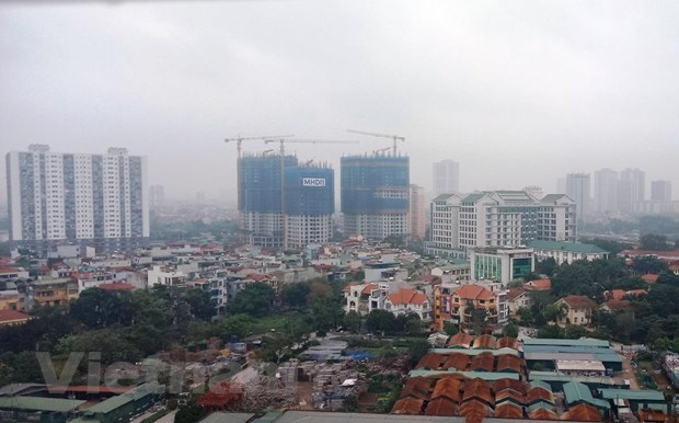 Real estate gloomy in early year, trading floors seek out supplies hinh anh 1
