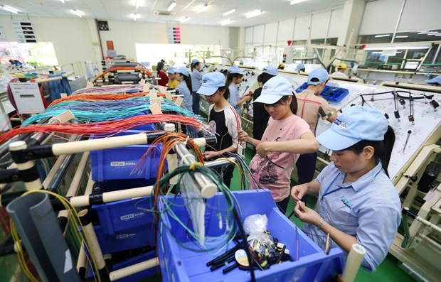 Vietnam's economic growth has yet to reach strategic goal: expert hinh anh 1