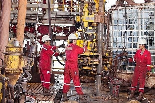 PV Drilling V: Highlight of Vietnam's petroleum industry hinh anh 1