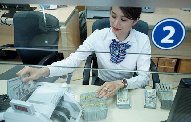Stopping foreign currency lending: An arrow hits multiple targets hinh anh 1