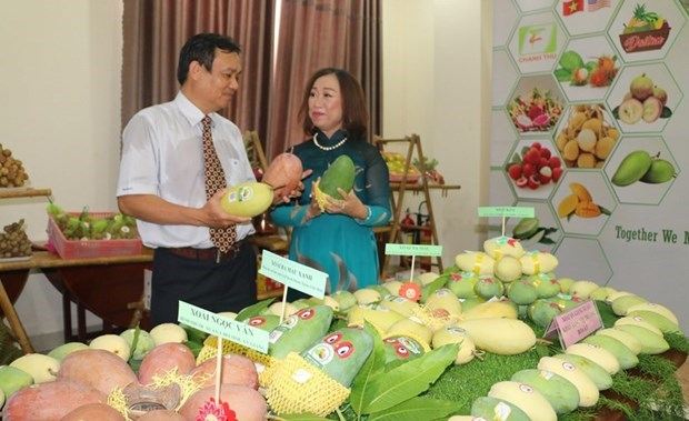 An Giang province promotes agro-fishery exports hinh anh 1