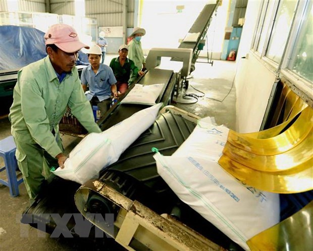 Vietnam ranked fourth in Southeast Asia in food security hinh anh 1