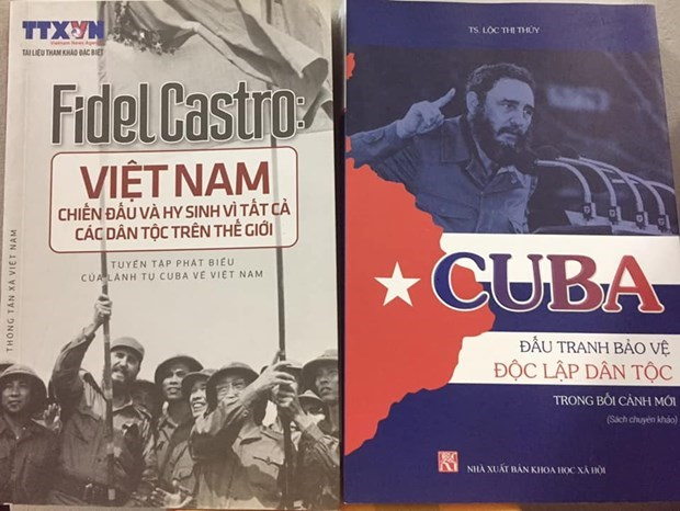 Vietnam-Cuba cultural exchange in review hinh anh 3