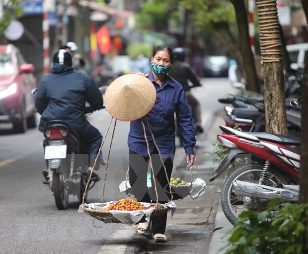 Support for self-employed workers made jobless: Making sure no one is left behind hinh anh 1