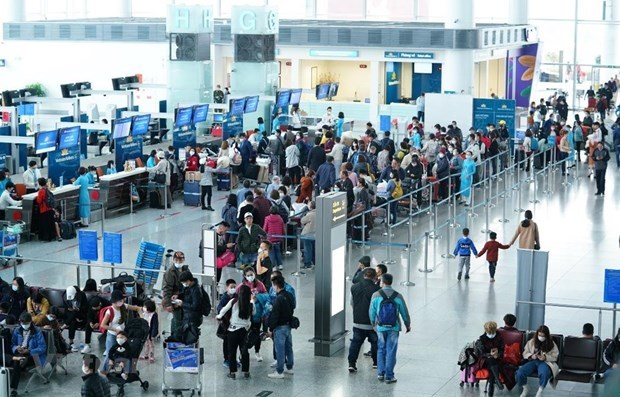 Vietnamese airlines facing vital challenges hinh anh 2